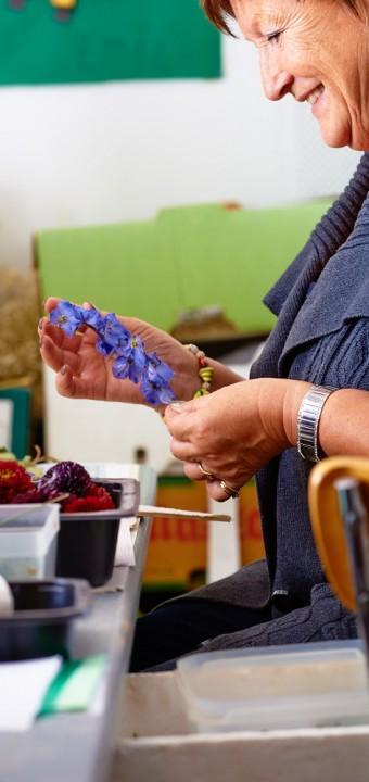 Ridderspore-Kornblomster blå farver der holder smukt.